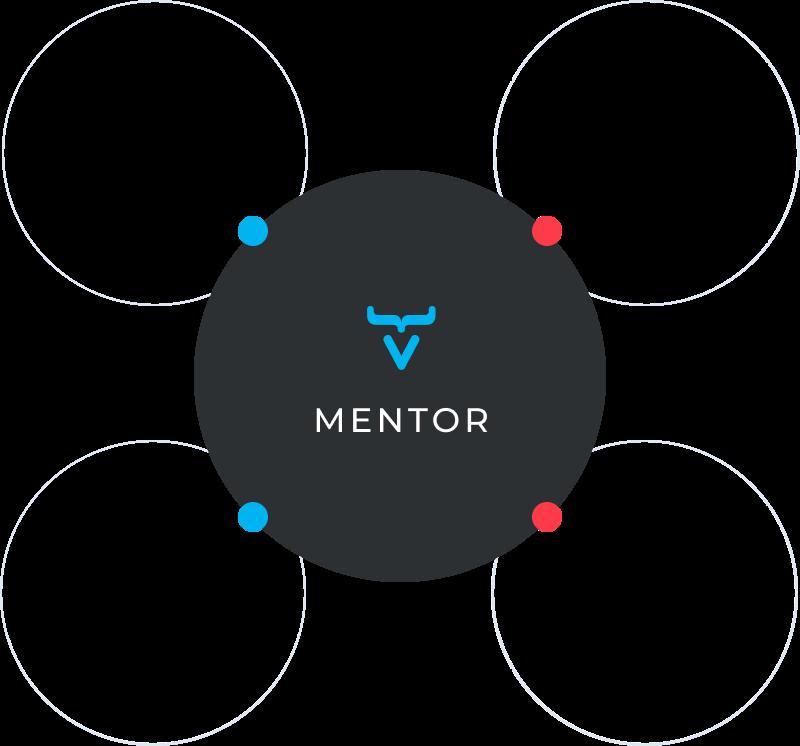 vaadin-mentor