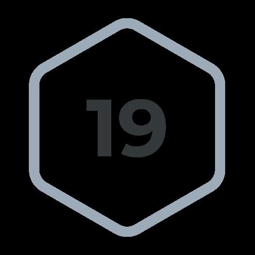 v19-hexagon